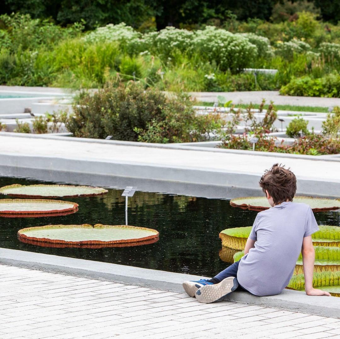Visiter le Jardin botanique