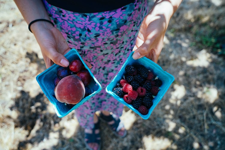 10 fruit et légumes à cueillir vous-mêmes cet été